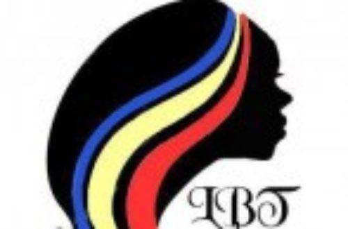 Article : Beauté Tchadienne : rapprocher le Tchad de sa diaspora