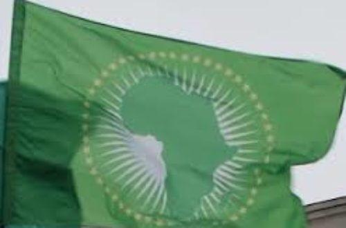 Article : Voici mes vœux messieurs les chefs de « tas » africains