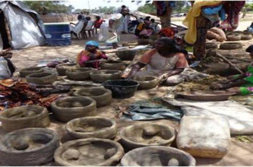 Article : Réfugiés aux Tchad: quel enjeux environnementaux?